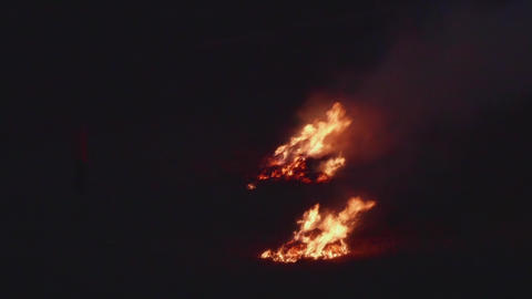 Fire in the forest at night Two outbreaks of consuming fire destroying Live Action