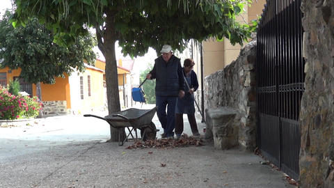 Older people who collect leaves in front of the house gathered under the few tre Footage