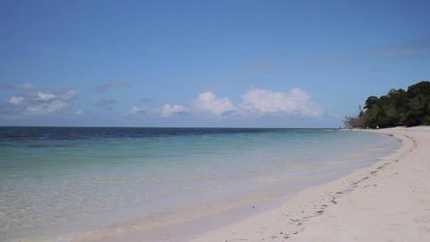 オーストラリア グリーン島 綺麗な砂浜 ビデオ