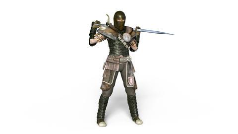 Gladiator Animation