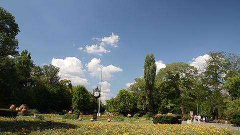 The Cismigiu Gardens In Bucharest stock footage