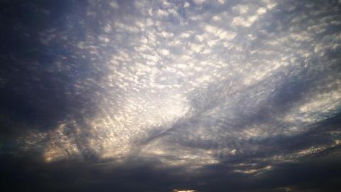 sky ビデオ