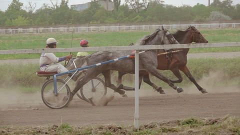 Two Racer at the Harness Racing. Slow Motion Footage