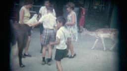 Vintage Film Petting Zoo Footage