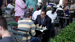 New York City Chess Players Footage
