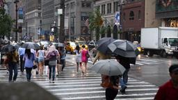 Rainy New York Streets Footage