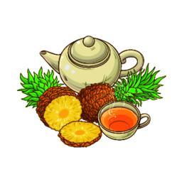 pineapple tea illustration Vector