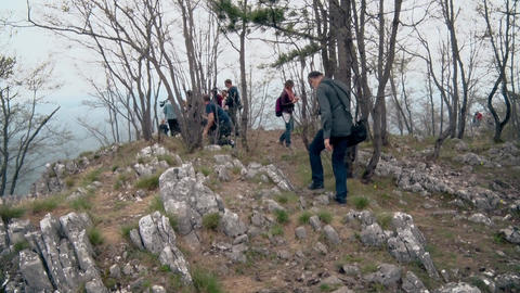 People walk through the Old Forest on the mountain ビデオ