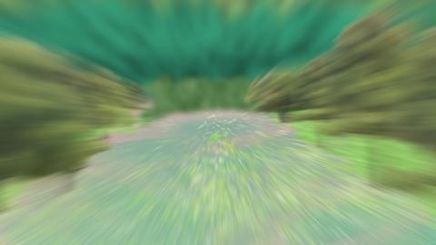 森を走る背景 2 CG動画素材