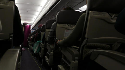 Passengers Sitting In Airplane. Plane. Airborne. Flight Flying. Traveling 05 ビデオ