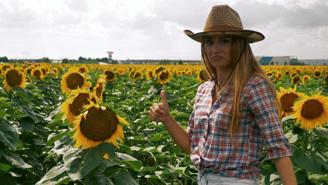 Happy farmer girl checking the sunflower and thumb up Live Action