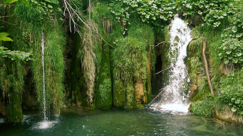 Small beautiful waterfalls and green moss in slow motion Live Action