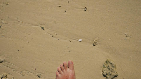 Walking on a yellow sand beach Live Action