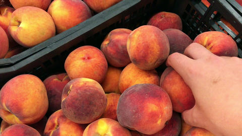 Young man picking peaches in the supermarket Live Action
