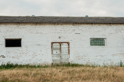 Old white shed for growing cattle, Farm for cattle breeding Photo