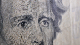 Extreme Closeup of $20 Bill US Footage