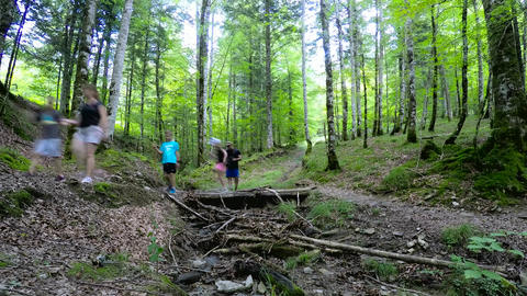 Time Lapse Of A Family Walking In The Forest Over Wooden Brdige GIF