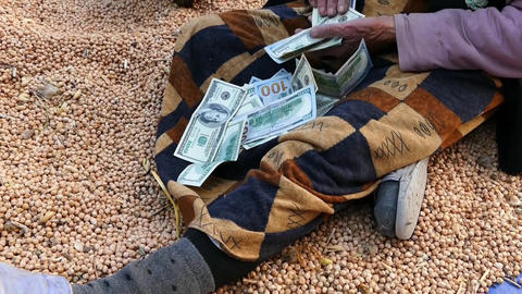 the farmer selling chickpeas is getting money,farmers selling crops Live Action