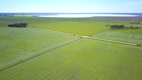 aerial view buckwheat fields crossed by road with cars and lake Live Action