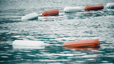 Border of swimming area at sea marked with floating buoys Footage