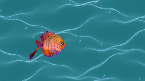 Goldfish animation, cute fish flowing in wavy water with air bubbles, seamless GIF