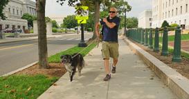 Man Walks Dog Near the Capitol in Washington DC Footage