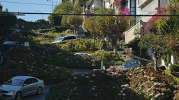 Cars Drive Down Lombard Street in San Francisco Footage