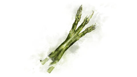 Asparagus, animation of watercolor drawing Animation