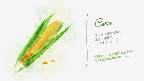 Useful properties of Corn Animation