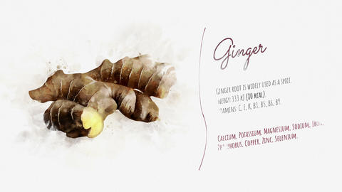 Useful properties of Ginger Animation