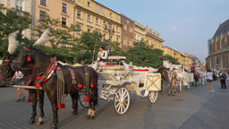 Krakow, Poland. Horse cab in the old town in Krakow ビデオ