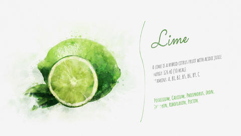Brief information about Lime Animation
