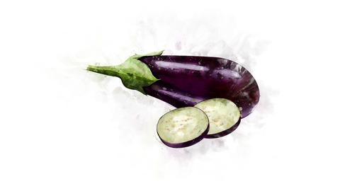 The Eggplant illustration appearance Animation
