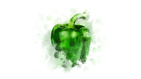 Green watercolor Bell pepper on the alpha channel Animation