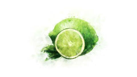 Animated illustration of Lime Animation