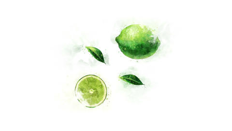 Lime painted in watercolor Animation