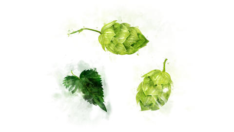 Several hops animations on a transparent background Animation