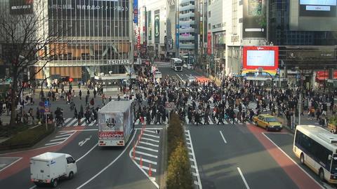 Shibuya intersection at Shibuya in Tokyo ビデオ