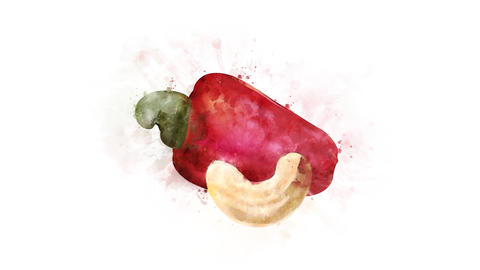 Cashew fruit for overlay Animation
