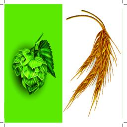 Hops and malt. Vector illustration ベクター