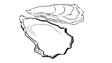 Oyster Stock Video Footage