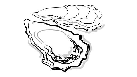 Oyster Animation