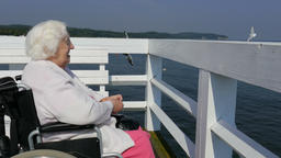 Elderly woman in a wheelchair is feeding gulls on a pier Live Action