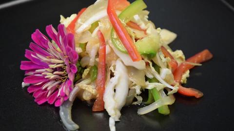 Jellyfish salad food cuisine Footage