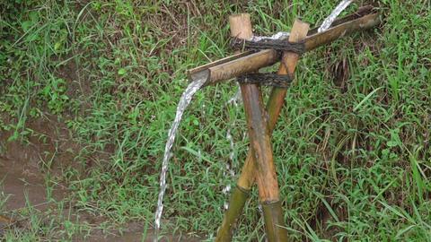 Bamboo Plumbing. Slow Motion ビデオ