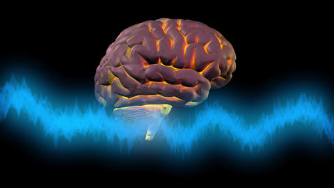 Brainwaves in front of glowing brain. 3d animation Animation