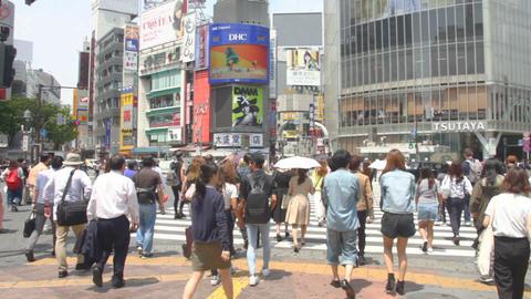 Shibuya crossing daytime middle shot standard focus ビデオ