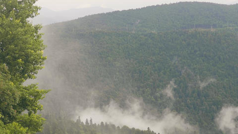Foggy clouds over green mountain and hills covered green forest Footage