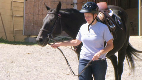 Woman Leading Horse Stock Video Footage