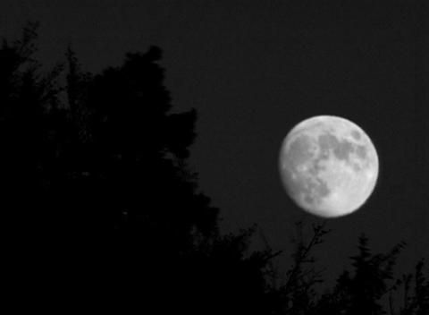 DV00001 mystik Mond1SW Footage